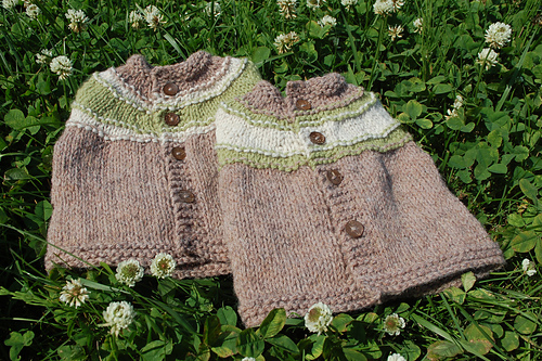 Two little sweaters. :)